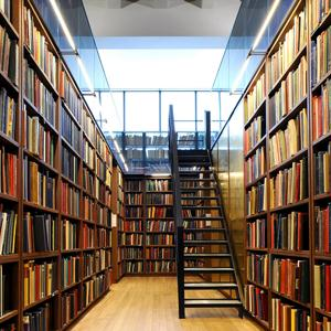 Библиотеки Милютинской